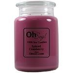 26oz. Jar Soy Candle - Spiced Cranberry